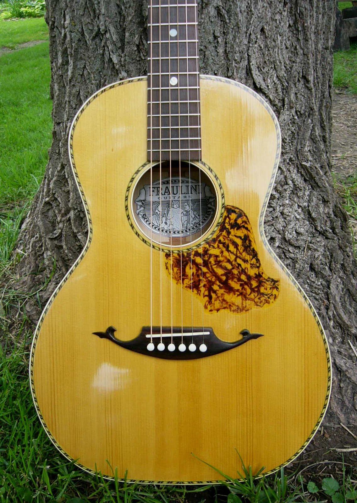 Pickguards And Faux Tortoise Fraulini Guitars